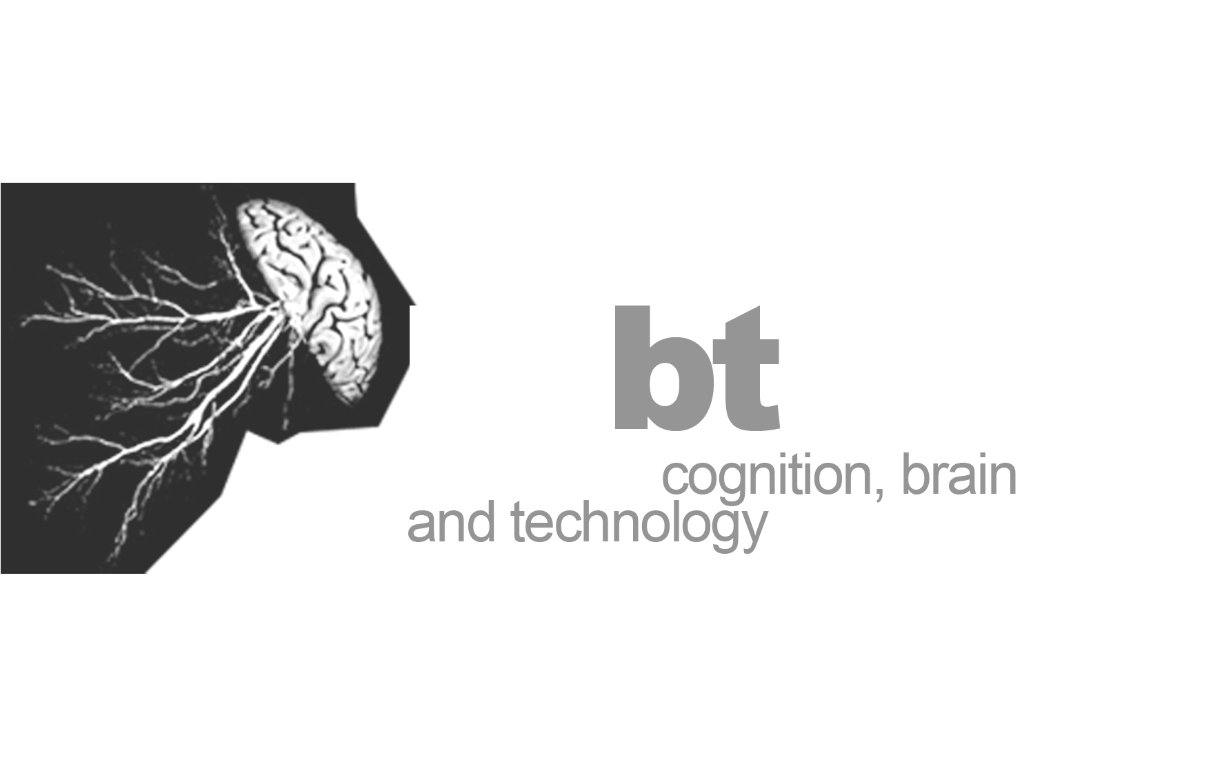 Barcelona cognition, brain and technology summer school